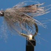 Beginner-Fly-Tying-a-Stillborn-Caddis-with-Jim-Misiura