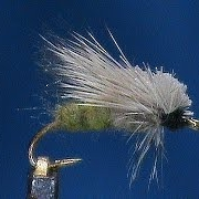 Beginner-Fly-Tying-an-Egg-Laying-Caddis-with-Jim-Misiura