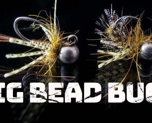 Big-Bead-Bugs
