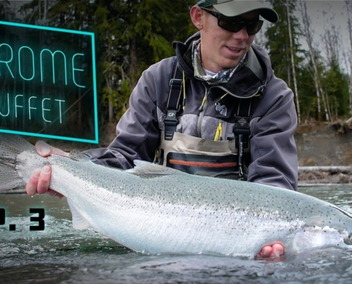 CHROME-Buffet-GIANT-Steelhead-Olympic-Peninsula-Fishing
