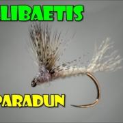 Callibaetis-Comparadun-by-Curtis-Fry