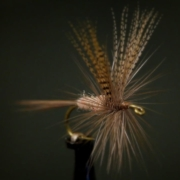 Catskill-Style-Hendrickson-Dry-Fly