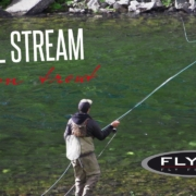 FLY-TV-Small-Stream-Brown-Troutin-in-the-Mountains