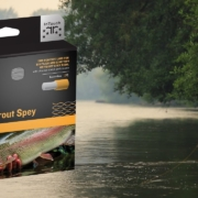 First-Impressions-RIO-InTouch-Skagit-Trout-Spey-Head