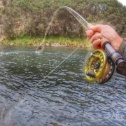 Fishing-the-Backcountry-Solo.-New-Zealand