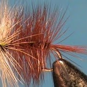 Fly-Tying-Beginners-Fly-a-Brown-Bi-Visible-with-Jim-Misiura