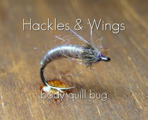 Fly-Tying-Body-Quill-Bug-Hackles-Wings