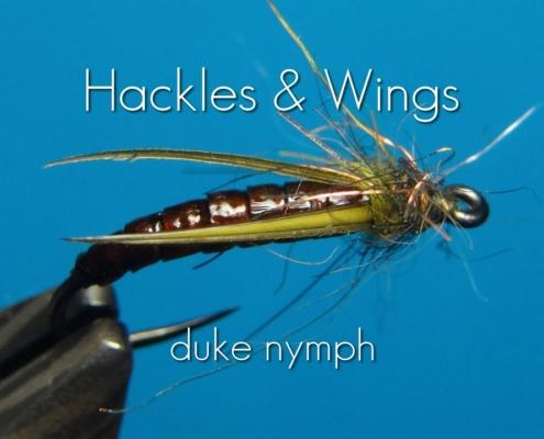 Fly-Tying-Duke-Nymph-Hackles-Wings