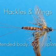 Fly-Tying-Extended-Body-Mayfly-Spinner
