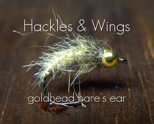 Fly-Tying-Goldhead-Hares-Ear-Hackles-Wings