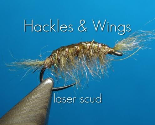 Fly-Tying-Laser-Scud-Hackles-Wings