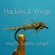 Fly-Tying-Mayfly-Baetis-Nymph