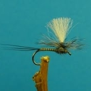 Fly-Tying-Mayfly-Dun