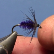 Fly-Tying-Peacock-amp-Starling-Soft-Hackle