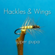 Fly-Tying-Super-Pupa