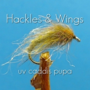 Fly-Tying-UV-Caddis-Pupa