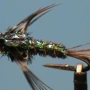 Fly-Tying-a-Beadhead-Flashback-Pheasant-Tail-Nymph-with-Jim-Misiura
