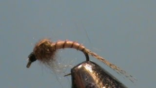 Fly-Tying-a-Biot-WD-40-with-Jim-Misiura