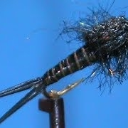 Fly-Tying-a-Black-Pearl-with-Jim-Misiura
