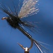Fly-Tying-a-Black-Quill-with-Jim-Misiura