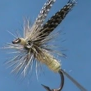 Fly-Tying-a-Green-Drake-with-Jim-Misiura
