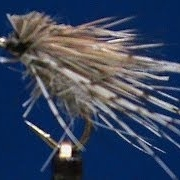 Fly-Tying-a-Hares-Ear-and-Partridge-Caddis-with-Jim-Misiura