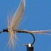Fly-Tying-a-Light-Ginger-Quill-with-Jim-Misiura