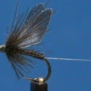 Fly-Tying-a-Realistic-Blue-Wing-Olive-with-Jim-Misiura