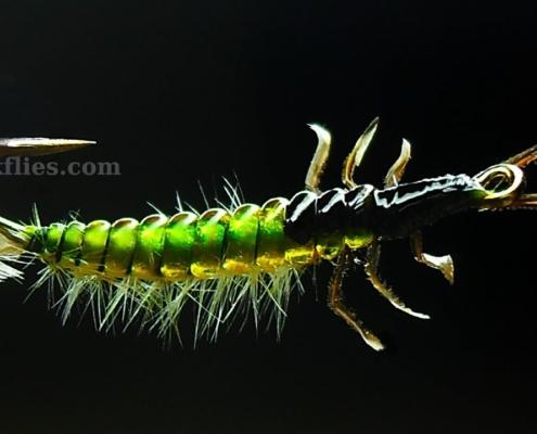 Fly-Tying-a-Rhyacophila-Caddis-Larva-by-Mak