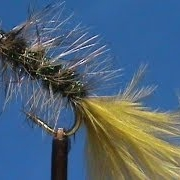 Fly-Tying-a-Thin-Mint-with-Jim-Misiura