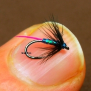 Fly-Tying-a-UV-Micro-Spider-for-River-by-Mak