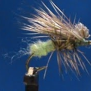 Fly-Tying-an-Egg-Laying-Caddis-with-Jim-Misiura