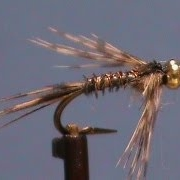 Fly-Tying-for-Beginners-a-Beadhead-Turkey-Tail-with-Jim-Misiura