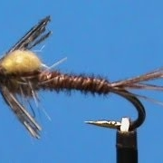 Fly-Tying-for-Beginners-a-Crackback-Sulphur-Nymph-with-Jim-Misiura