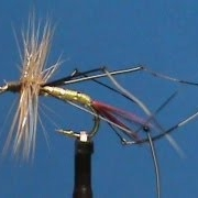 Fly-Tying-for-Beginners-a-Daddy-Long-Leg-Red-Tail-with-Jim-Misiura