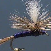 Fly-Tying-for-Beginners-a-Purple-Haze-with-Jim-Misiura