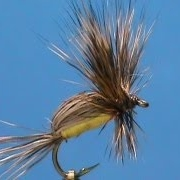 Fly-Tying-for-Beginners-a-Yellow-Humpy-with-Jim-Misiura