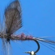 Fly-Tying-for-Beginners-an-Isonychia-Dun-with-Jim-Misiura
