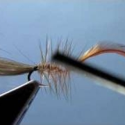 Fly-Tying-with-Hans-CDC-BUBBLE-WINGED-CADDIS