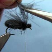 Fly-Tying-with-Hans-CDC-Beetle
