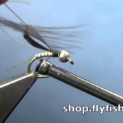 Fly-Tying-with-Hans-Quill-Body-Nymph