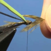 Fly-Tying-with-Hans-Split-Back-Baetis-Nymph