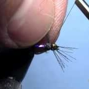 Fly-Tying-with-Hans-Ultra-Violet-Baetis
