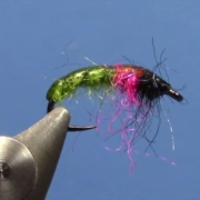 Fly-Tying-with-Ryan-Caddis-Czech-Nymph