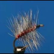 Fly-tying-a-Bloody-Asher