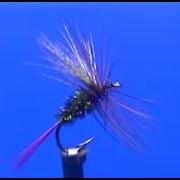 Fly-tying-a-Cabin-Coachman