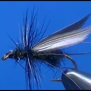 Fly-tying-a-Flying-Ant