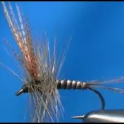 Fly-tying-a-Quill-Gordon