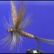 Fly-tying-a-Red-Quill