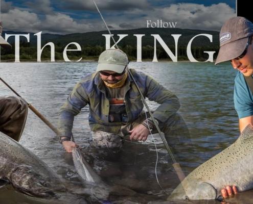 Follow-The-King